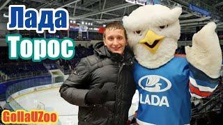Впечатления от хоккея в Тольятти. Увидел шайбу. Аншлаг. Супер атмосфера и голы. ХК Лада - ХК Торос.