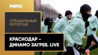"""«""""Краснодар"""" - """"Динамо"""" Загреб. Live». Специальный репортаж"""