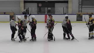 Полуфинал Hockey Club Cup. Дивизион «Любитель». ЕвроНика - Ленпроект