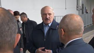 Лукашенко о выступлении белорусских футболистов: мне стыдно было на них смотреть
