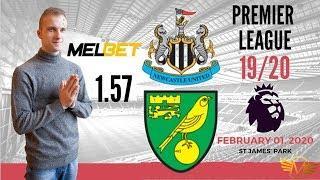 Ньюкасл Юнайтед - Норвич прогноз 01.02.2020 Newcastle United - Norwich City